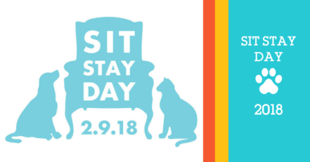 Sit Stay Day